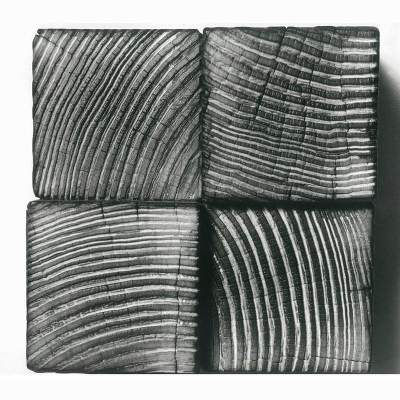 Albero sezione, 1977 legno, 15x15x10 cm