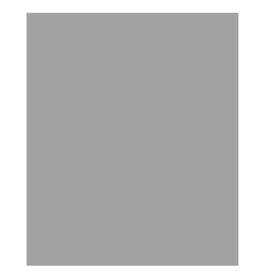 Rovio.png