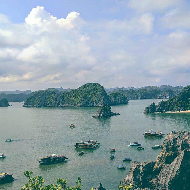 🇻🇳🐒⛵ . . . . . #asia #vietnam #halongbay #catba #monkeyisland #hashtag #fabo #watchoutlescoupsdesoleil