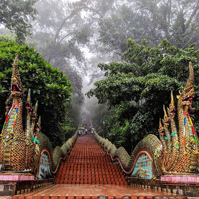 🇹🇭🏯💯 . . . . . . #asia #southeastasia #chiangmai #doisuthep #doisutheptemple #doisuthepmountain #doisuthepnationalpark #thailand #temple #teampixel #shotbypixel #instatravel #latergram #quebecoisenvoyage #steveetgeenasie #theglobewanderer #quebectraveler #traveldeeper #travelbug #traveldiary #travelgram #wanderlust #worldtravel #traveltheworld #travelinglife #globetrotter #exploretheworld #backpacker #backpacking #abusdehashtag