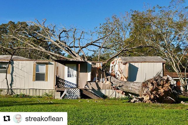 Check out @longleafridge for an excellent story about Hurricane Michael's effect on timber prices. The storm is an ongoing saga, with possible generational repercussions.  Repost @streakoflean ——————————— Destruction from Hurricane Michael is evident even in Rochelle, although the small town is 211 miles from Mexico Beach, where Hurricane Michael came ashore. The storm entered Georgia as a Category 3, the strongest hurricane to impact the state since 1898. The amount of damage to timber tracts, cotton fields, and local forests is staggering. Pecan groves from Seminole to Bulloch counties still look as if they were bombed. Early estimates pegged the damage to Georgia agriculture at almost $3 billion. #hurricanemichael #hurricane #wikipedia #2018 #georgia #southgeorgia #sowega #agriculture #farming #georgiafarm #georgiagrown