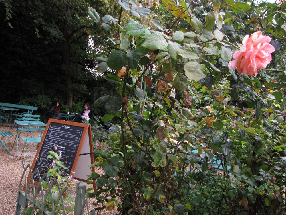 Musée de la vie Romantique Paris Rose Garden