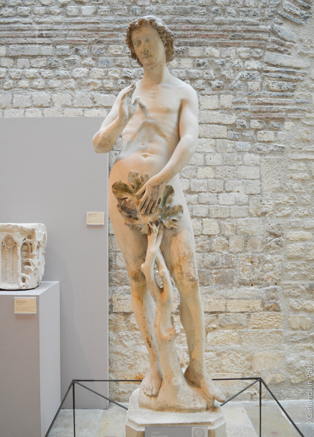 Adam, Notre-Dame, Musée de Cluny