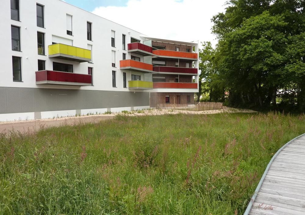 Beausoleil Saint-Avé Enet Dolowy Architecture