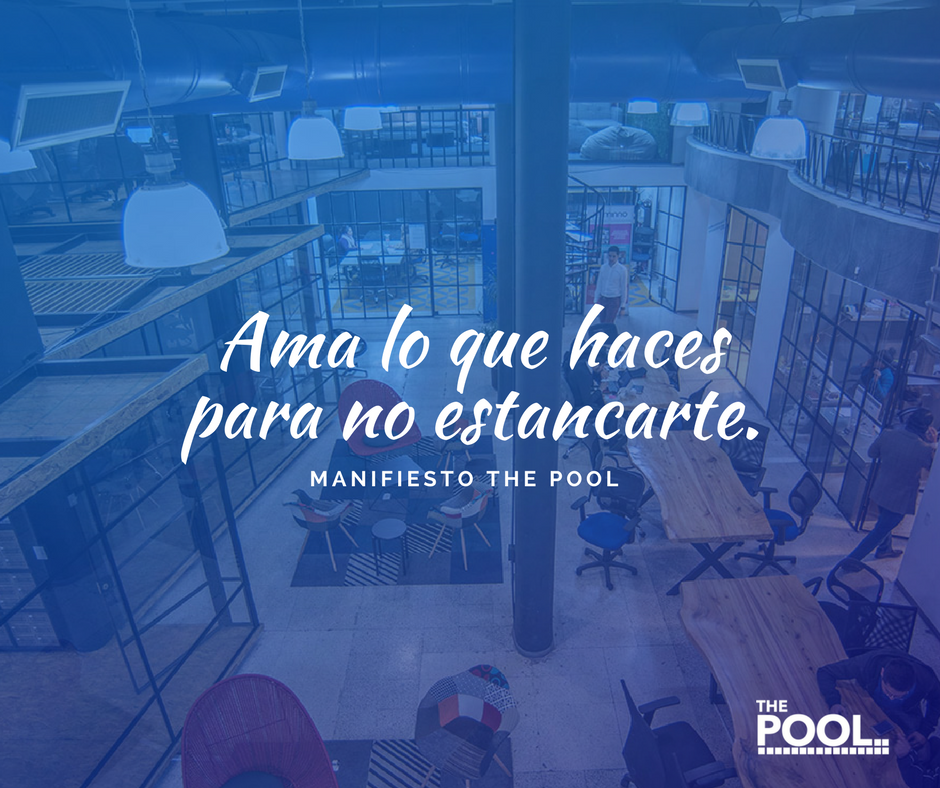 manifiesto-the-pool.png