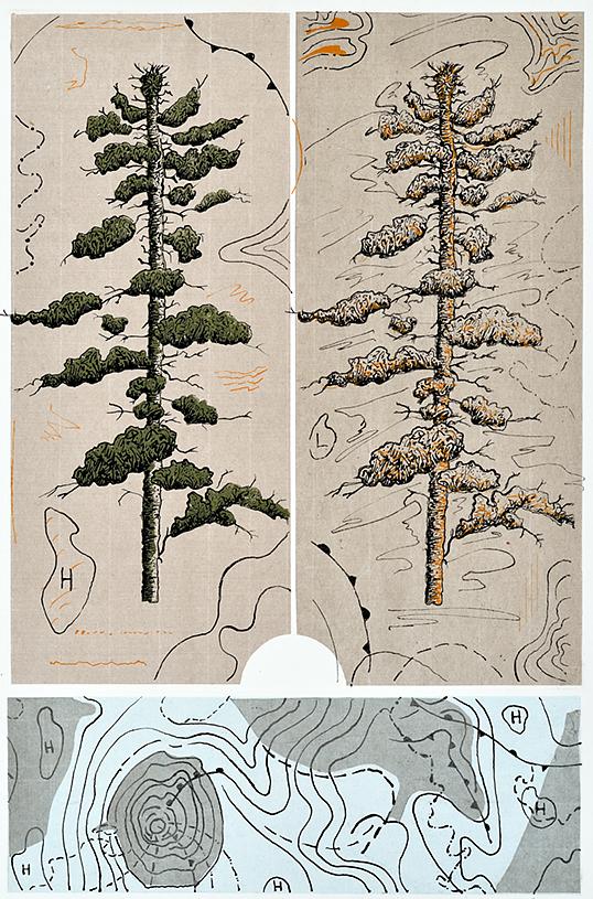 Ann McCall, Winter Winds, 1/5, screenprint & chine-colle, 56 x 37.5 cm, 2016.