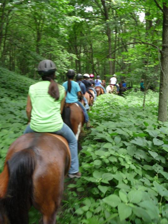Connecting Learners to the Sacred Sunktanka Horse Tradition