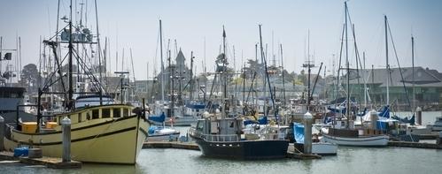 Harbor3X.JPG