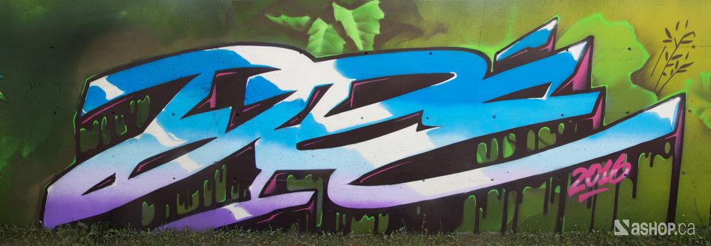 earthcrusher_ashop_a'shop_mural_murales_graffiti_street_art_montreal_paint_cheminvert_WEB.jpg