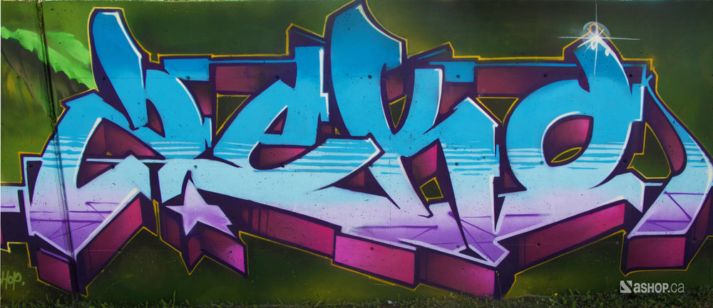 zek_ashop_a'shop_mural_murales_graffiti_street_art_montreal_paint_cheminvert_WEB.jpg
