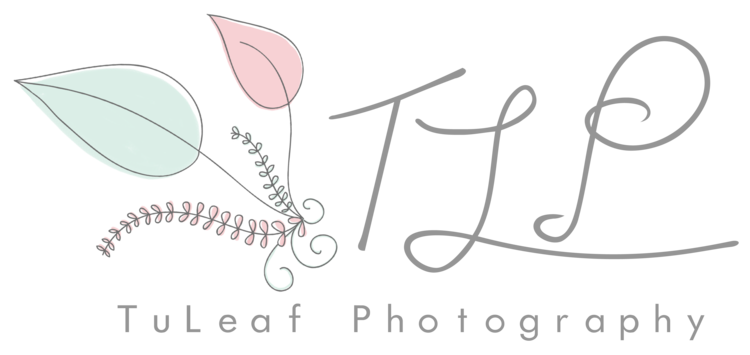 Tuleaf Photography :: Albany Newborn, Baby and Child Photographer