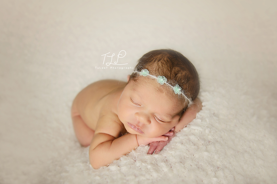 albany newborn photographer mint headband