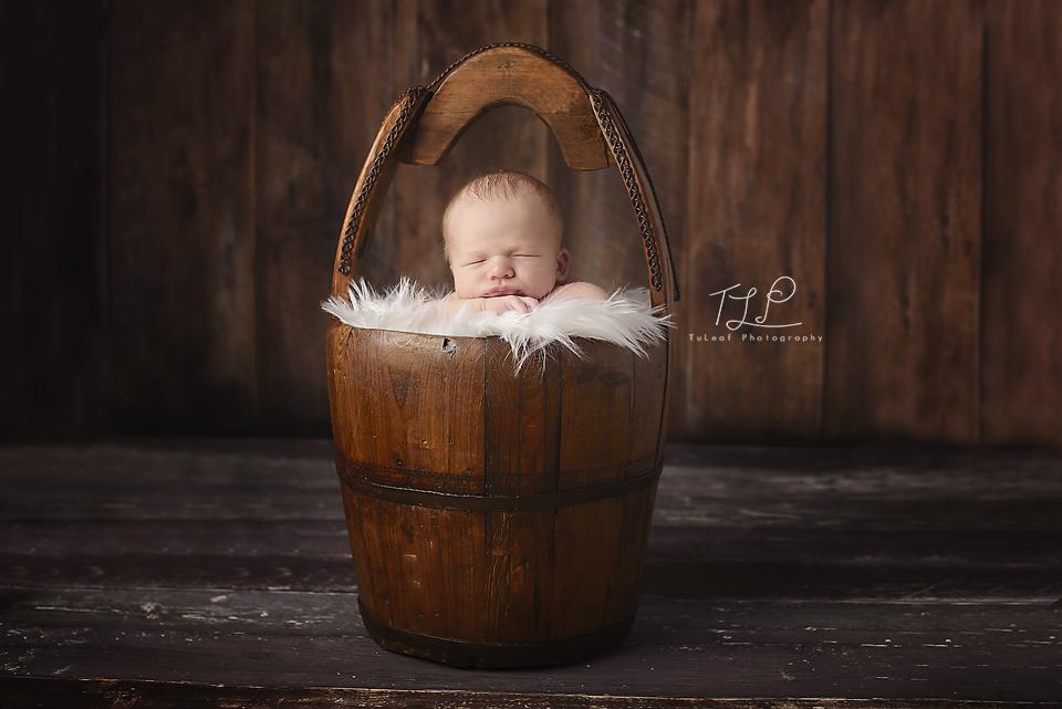 baby in bucket albany newborn photographer
