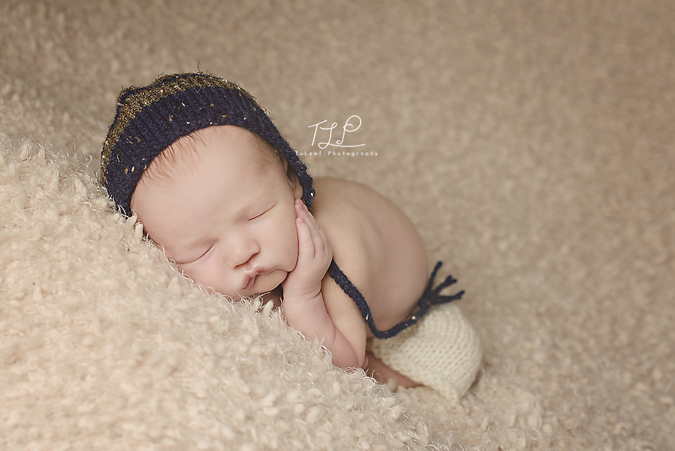 albany newborn photographer baby bonnet