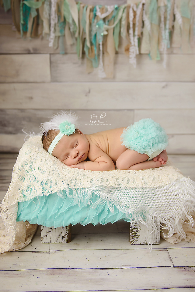 albany newborn photo mint banner and bloomers
