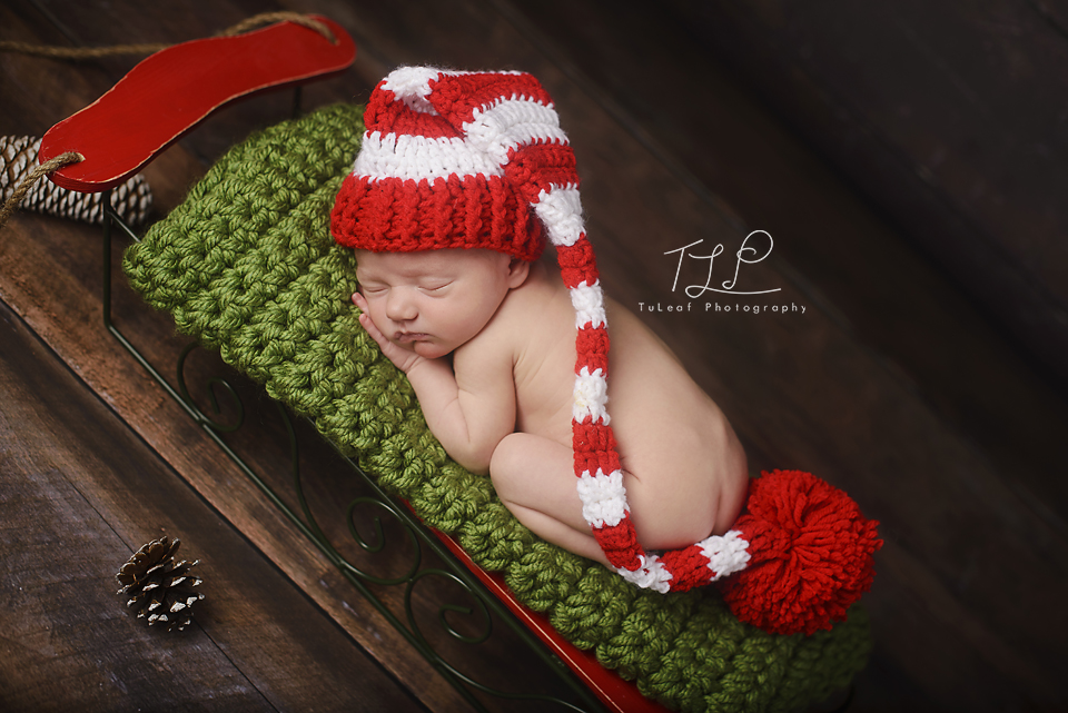 ny newborn photographer christmas photo