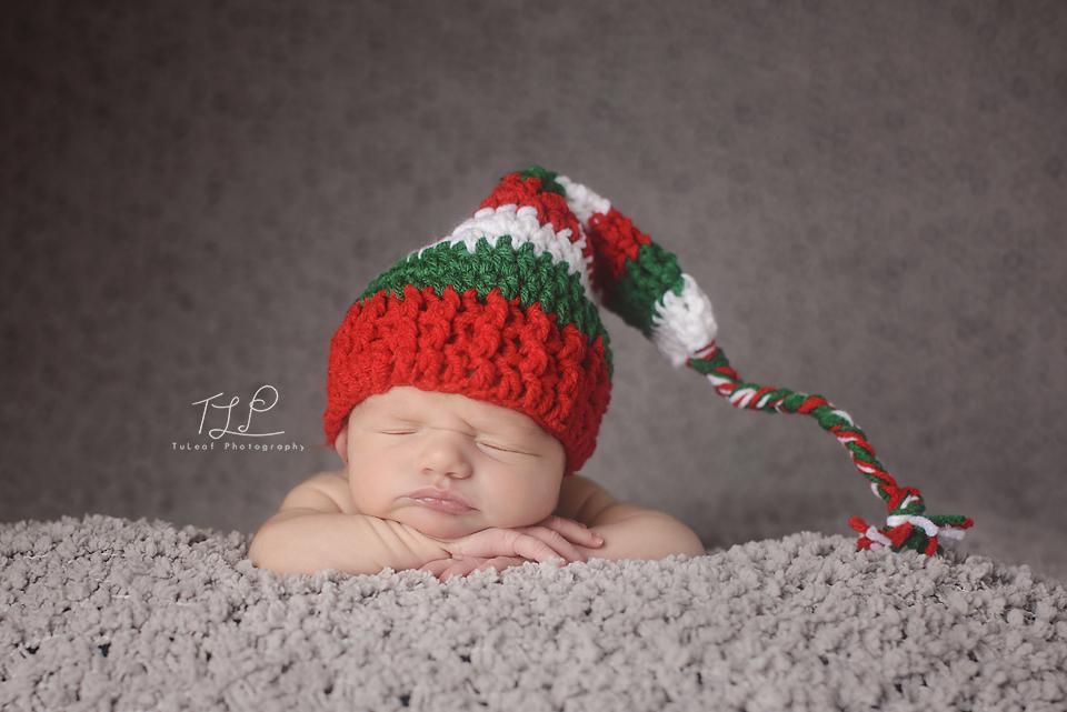 albany baby photographer ny christmas photo