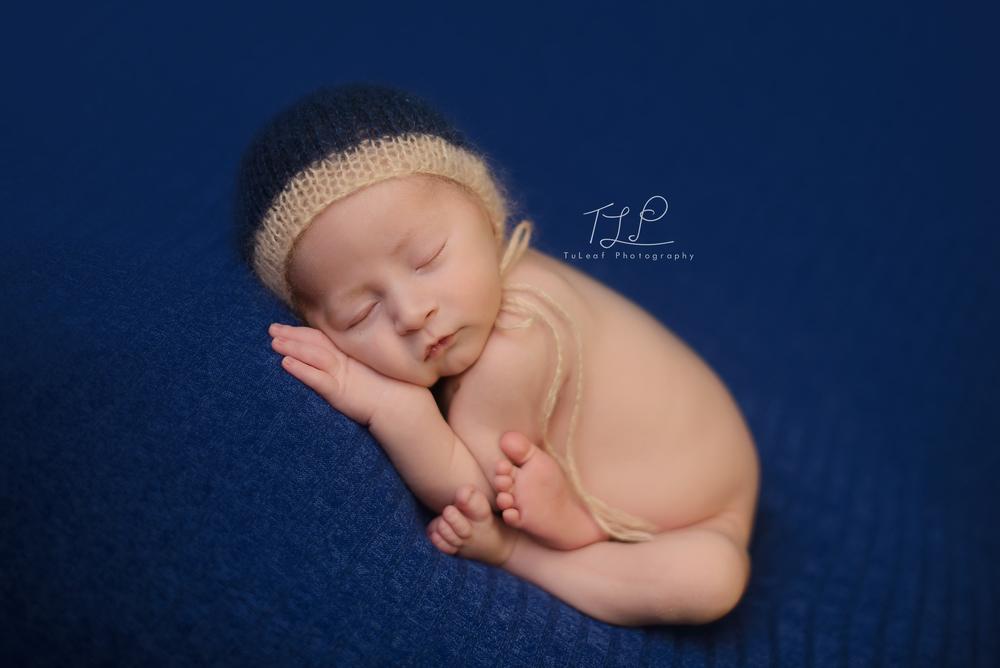 albany baby photographer newborn photo