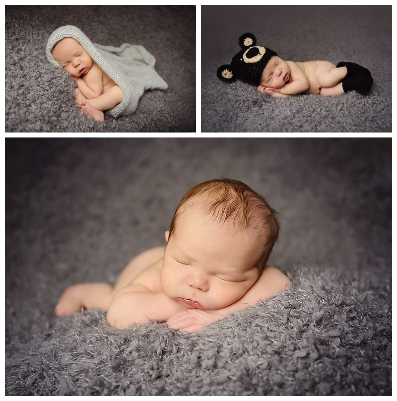 albany-newborn-photographer-bear.jpeg