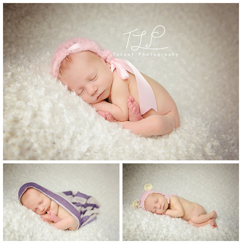 albany newborn-tacopose-photo.jpg