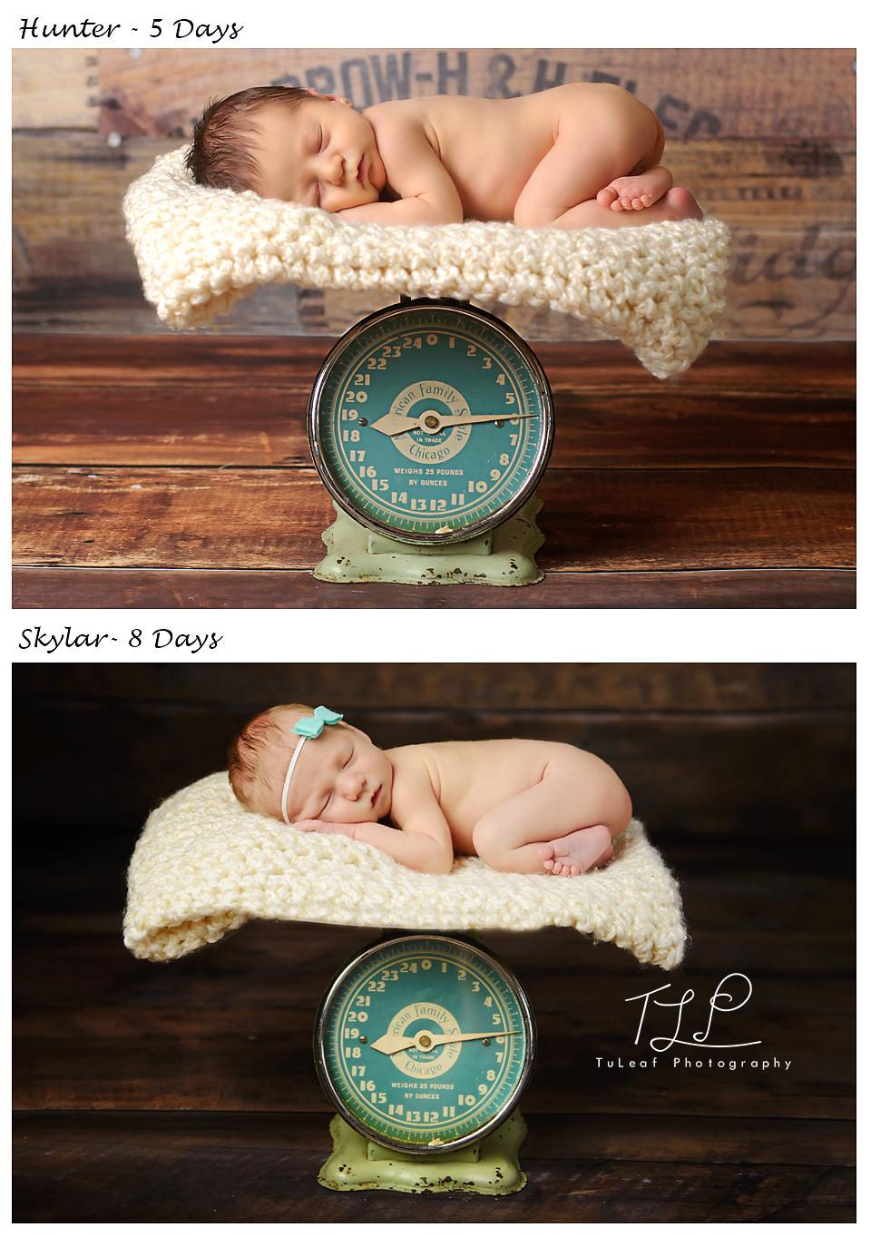 delmarphotographer-newbornscale-photo.jpeg