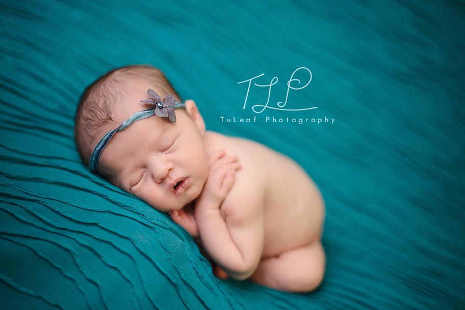 newborn baby photographer albany ny blue blanket