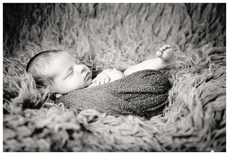 Albany Newborn Photographer baby wrap