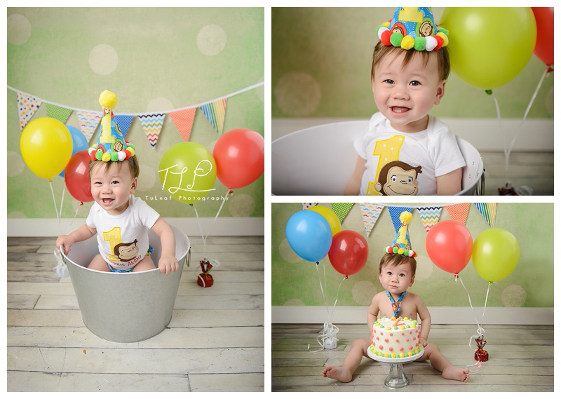 Happy 1st Birthday Happy !! To Book a Milestone and / or cake smash session Click Here