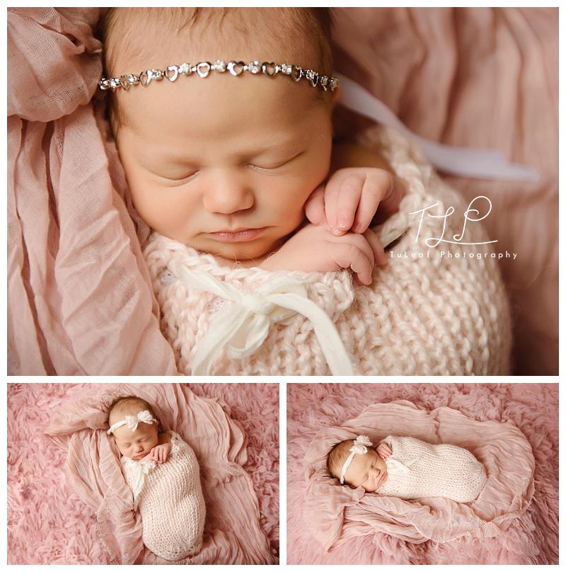 Newborn Baby Photographer Albany NY Pink wrap