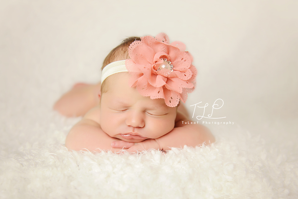 albany newborn photographer peach headband