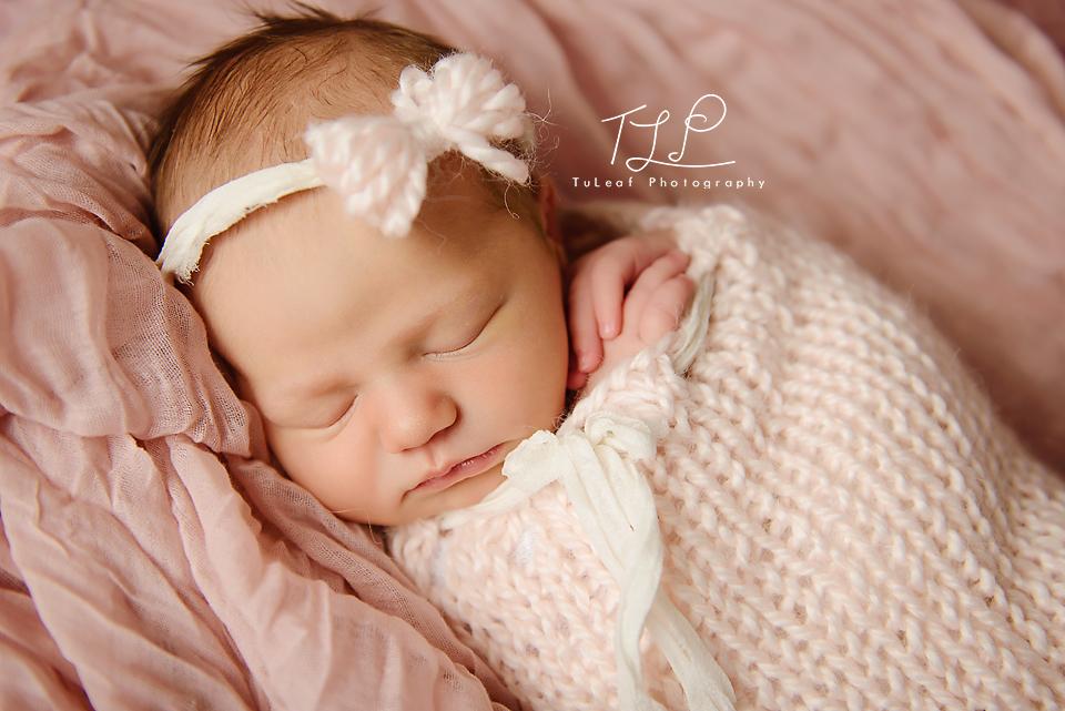 newbornbabyphotographer_albany