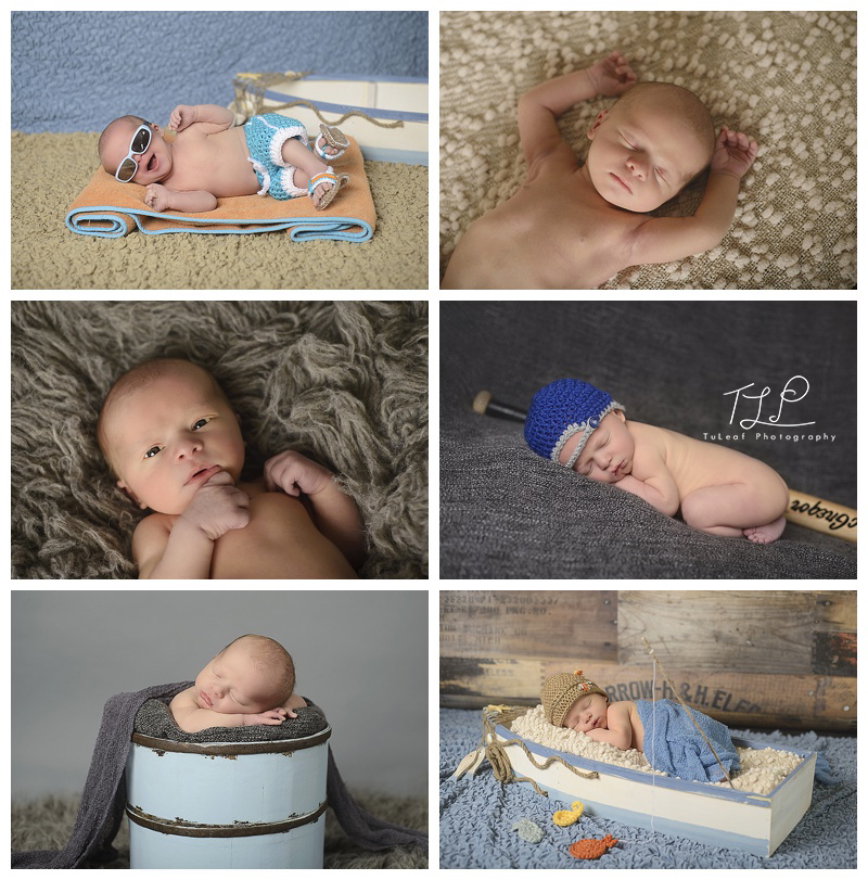 Albany Newborn Photos