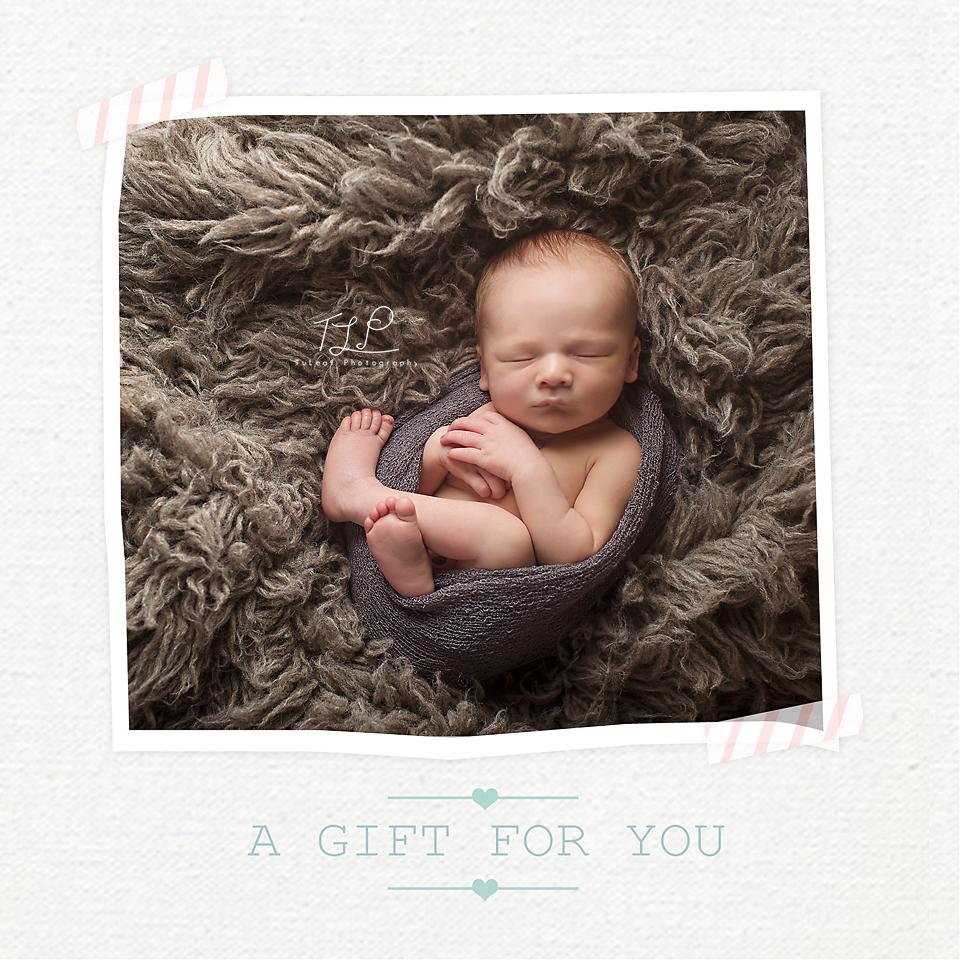 Albany Newborn Photographer