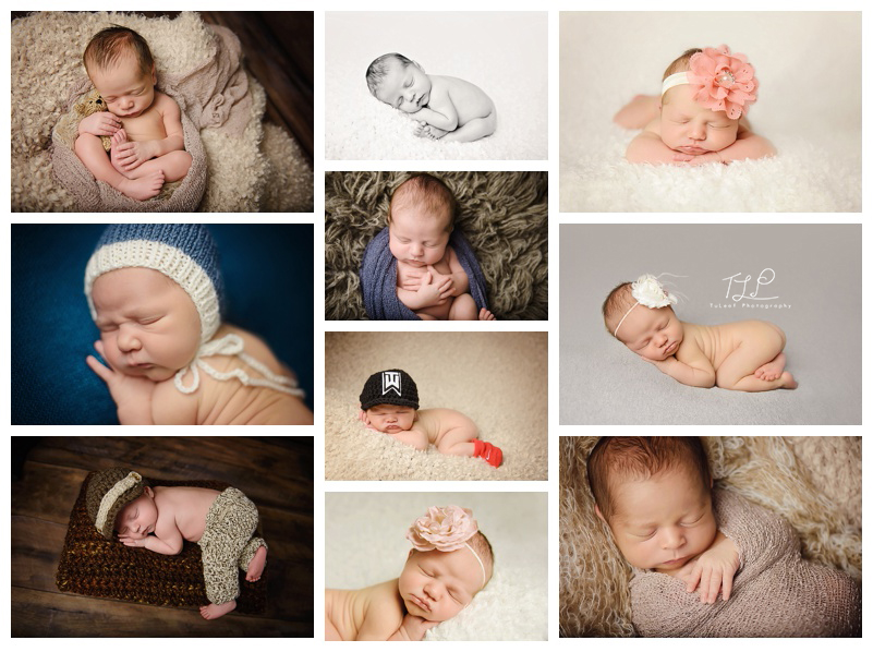 new york newborn photographer albany baby photos