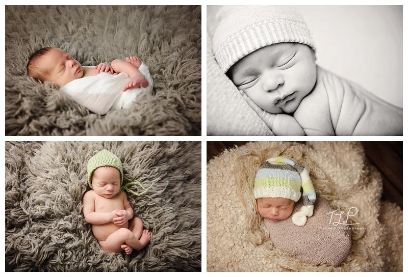 albany newborn photographer twin boys