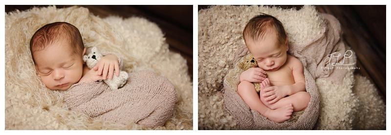 new york newborn photographer twin boys bears