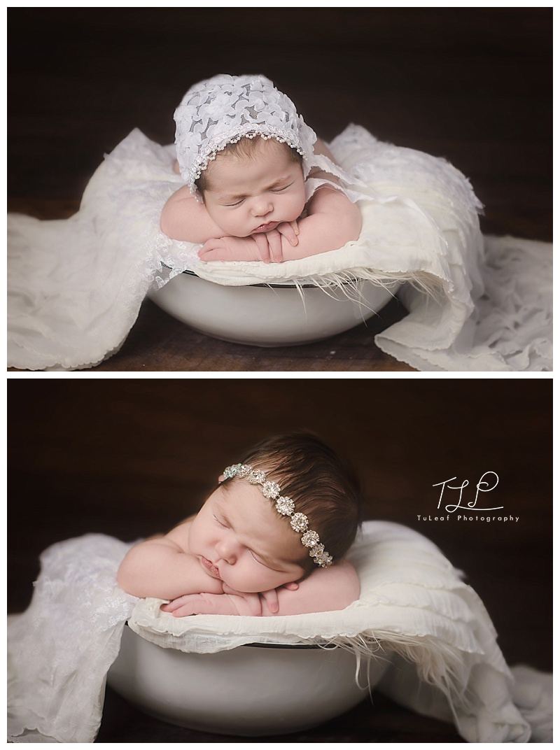 baby photographer albany white bucket