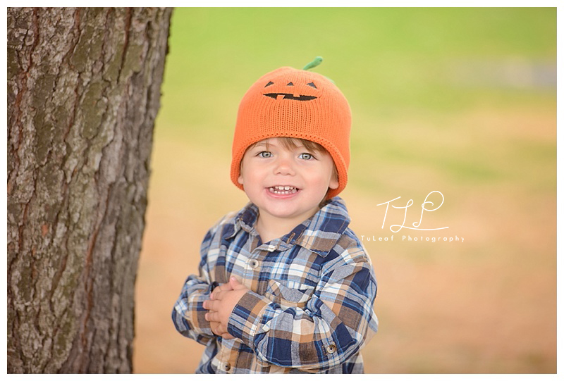 albany child photographer fall photo