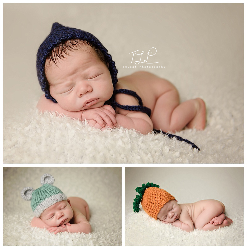 newborn photography in albany baby boy