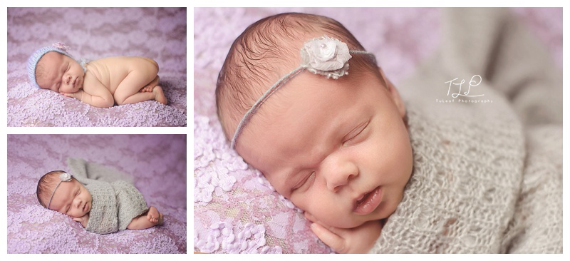 albany newborn baby photo pretty in purple