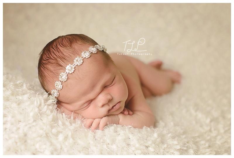 newborn photo albany photographer sweet girl