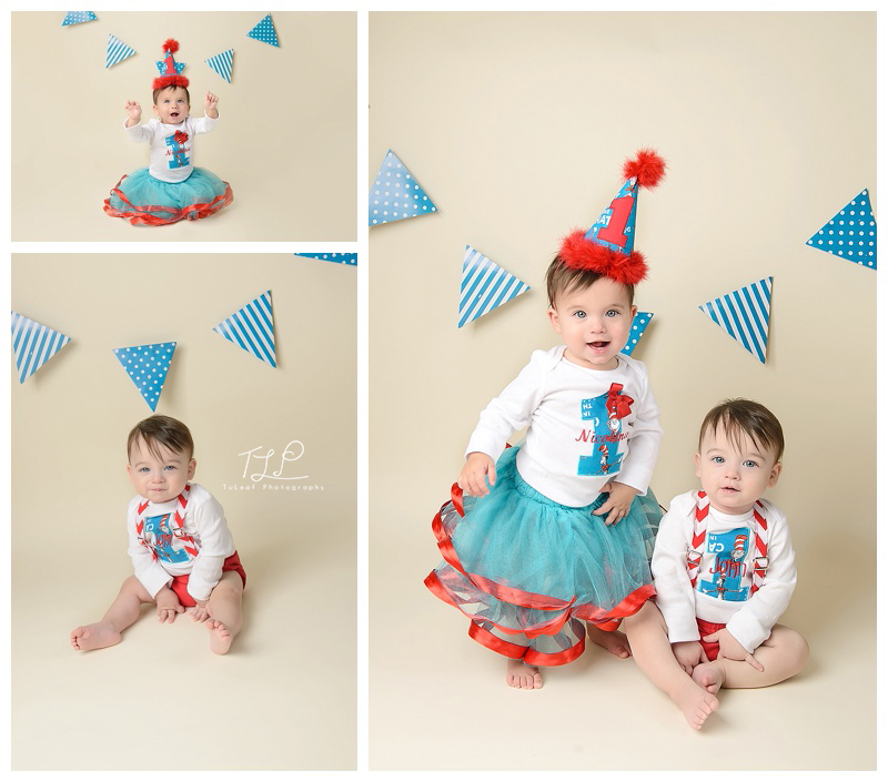 albany baby photography twins birthday