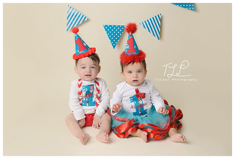 albany birthday photography twin babies