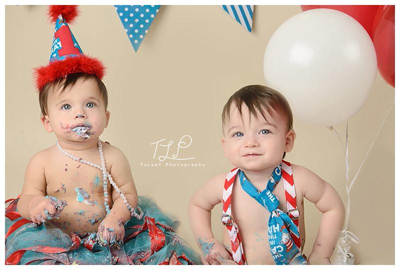 cake smash photographer albany twins