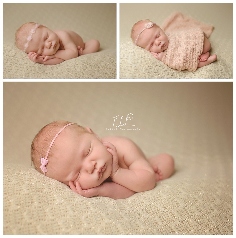 albany newborn photo pretty girl