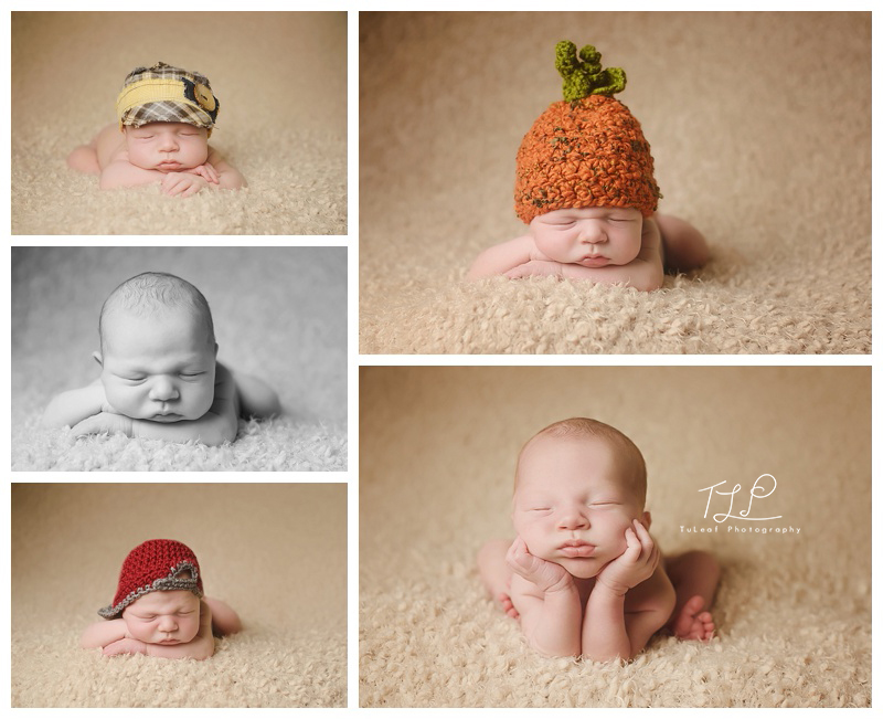 albany baby photography newborn boy