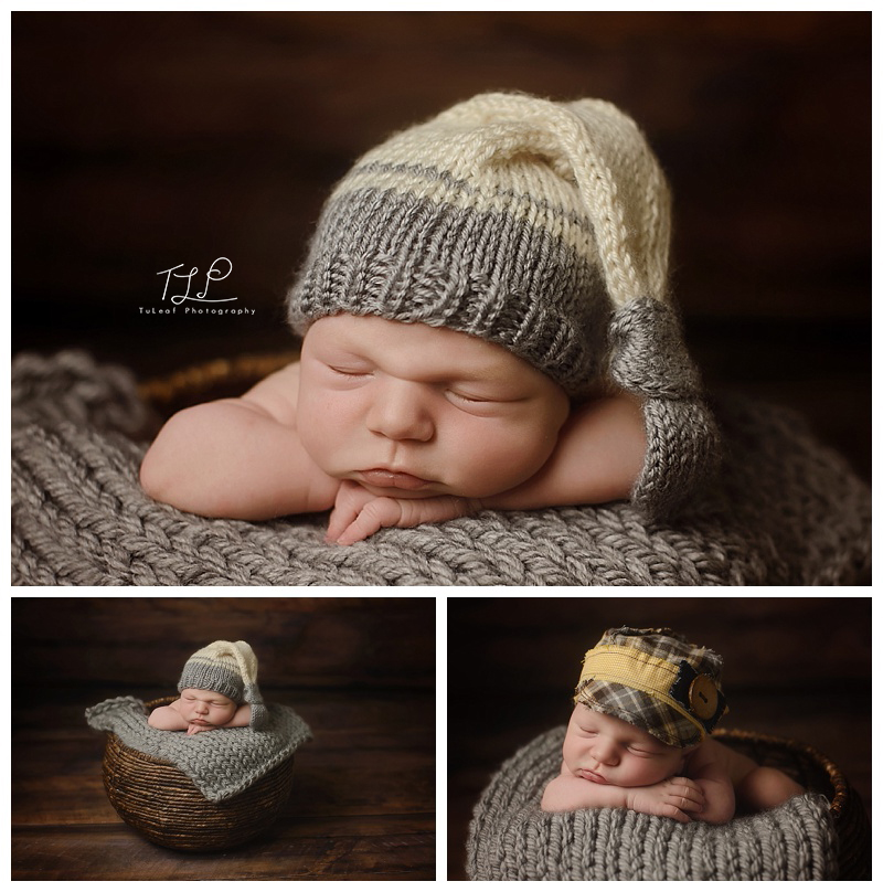 newborn photography in albany baby boy photos