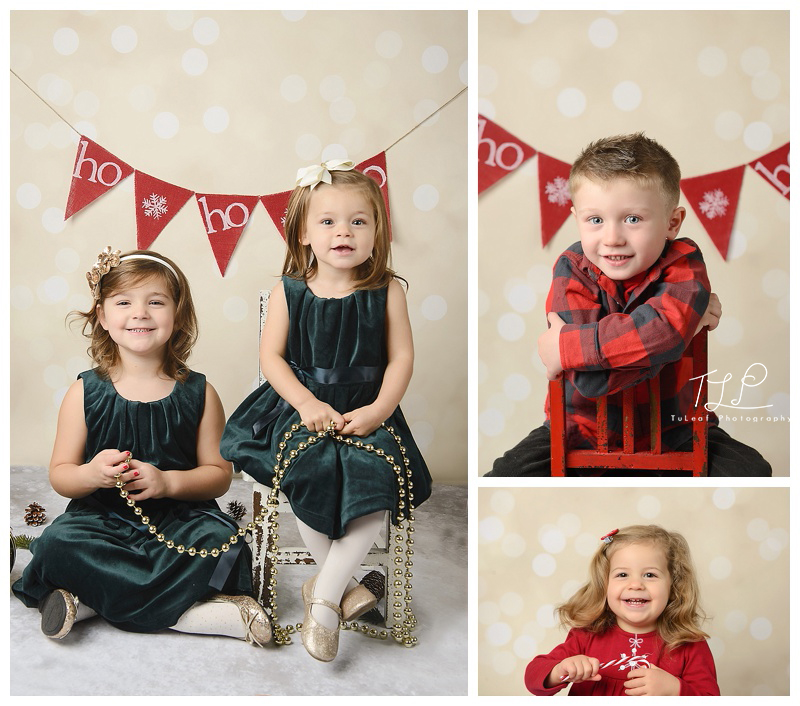 albany baby photos christmas minis