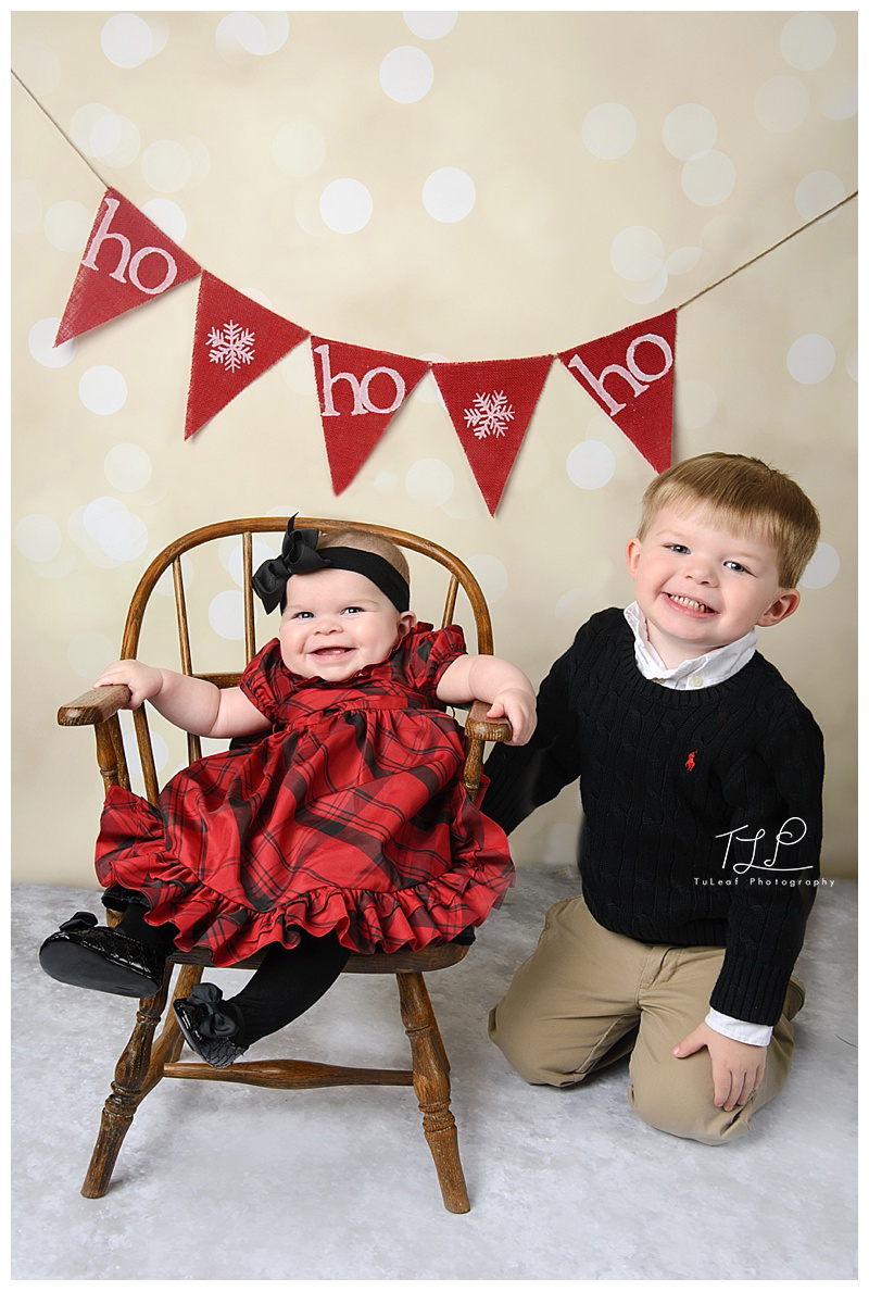 albany baby photography christmas pics