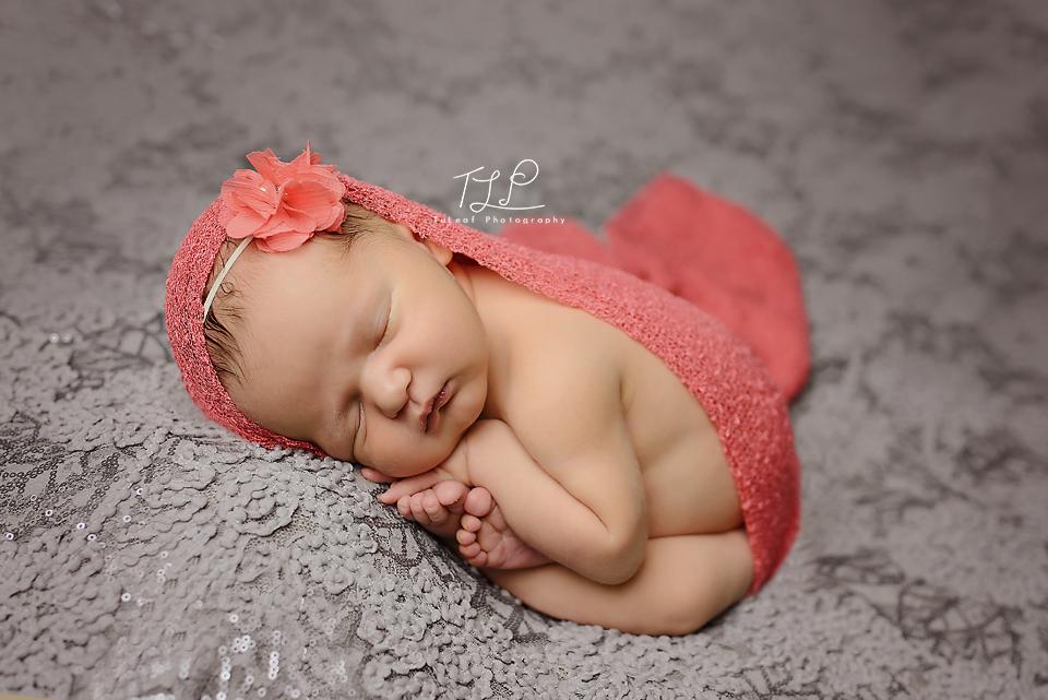 newborn photographer albany baby girl taco pose